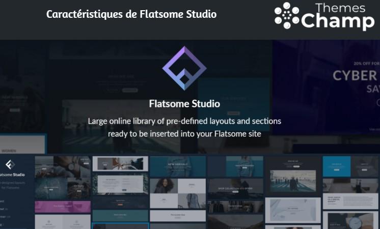 Caractéristiques de Flatsome Studio
