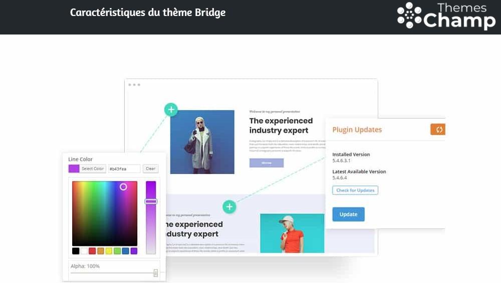 Personnalisation très simple du thème Bridge