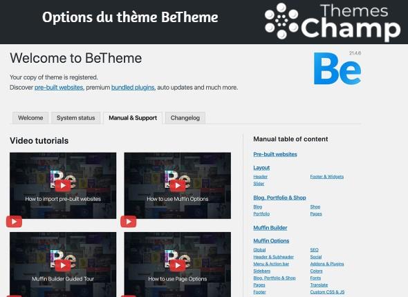 Options du thème BeTheme