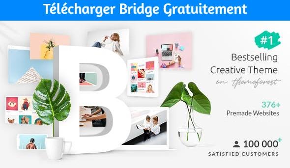 Télécharger Bridge Gratuitement