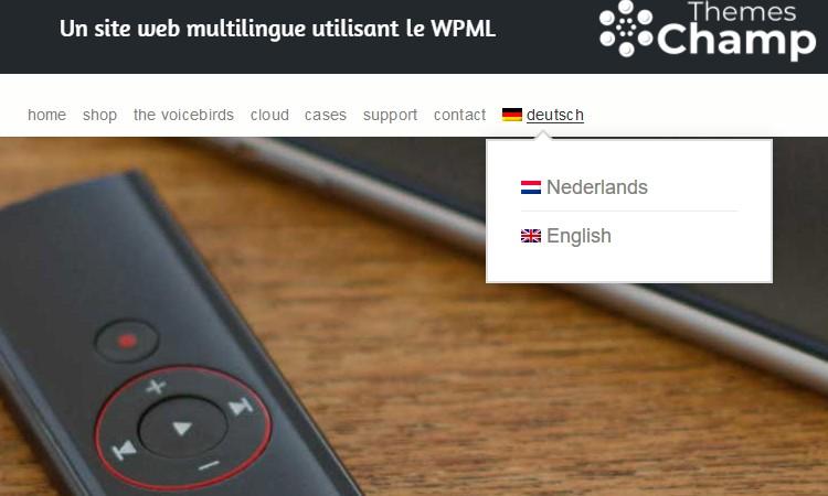 Un site web multilingue utilisant le WPML